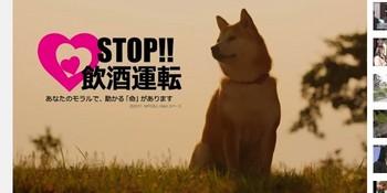 koyuki140821.jpg